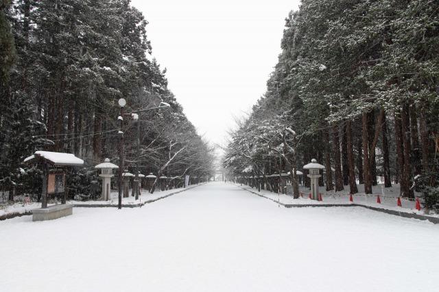 北海道神宮の冬の表参道