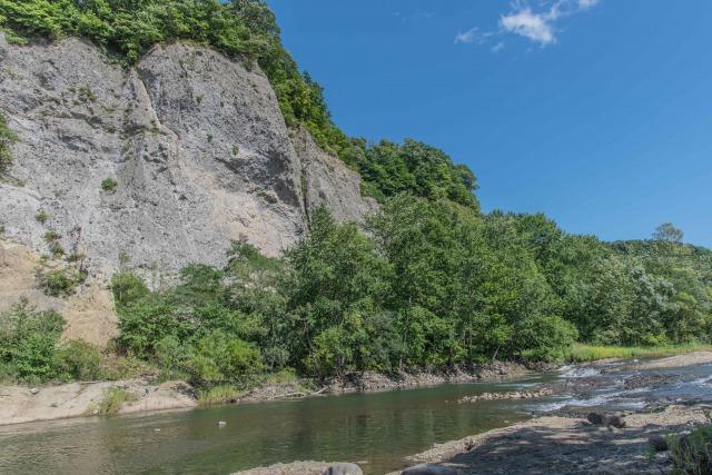 藻南公園の崖