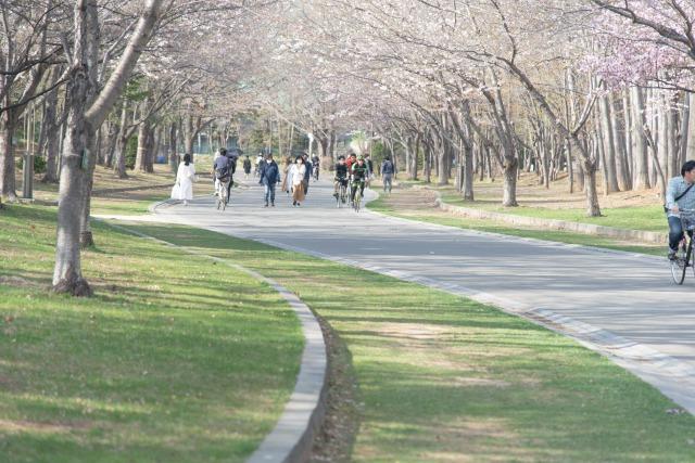 中島公園の見どころ