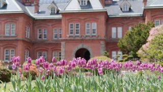 【札幌観光】赤れんが庁舎の四季の風景を写真で紹介!【アクセス抜群】