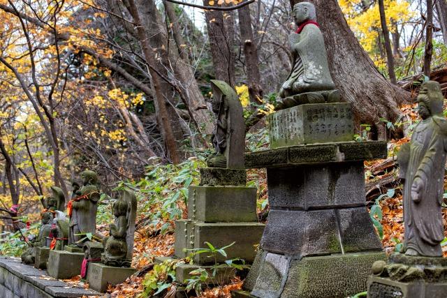 円山の登山ルート