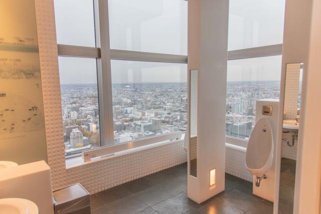 ちなみにトイレもすごい