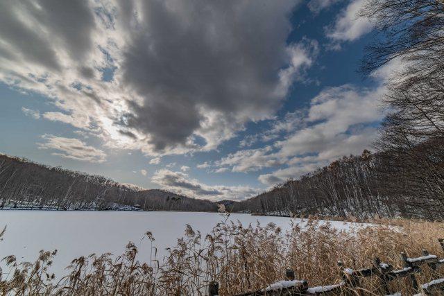 西岡水源地の池の風景