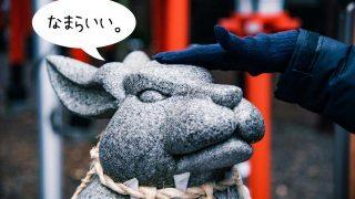 【函館】湯倉神社のえぞみくじ「イカすおみくじ」で大吉出してきた。