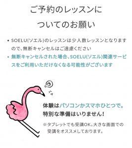 SOELU(ソエル)のレッスン参加方法