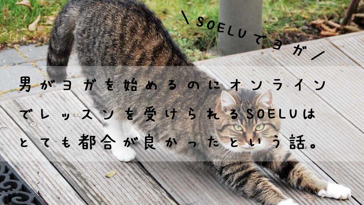 男がSOELU(ソエル)でヨガを始めた感想とレビュー!【家トレ】