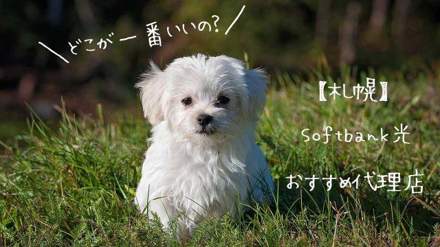 札幌でソフトバンク光を使う!お得な代理店6選【速度実測あり】