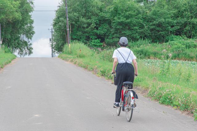 車なしでもOK!札幌から遊びにいける北海道のスポット