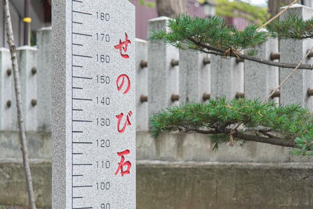 手稲神社のせのび石