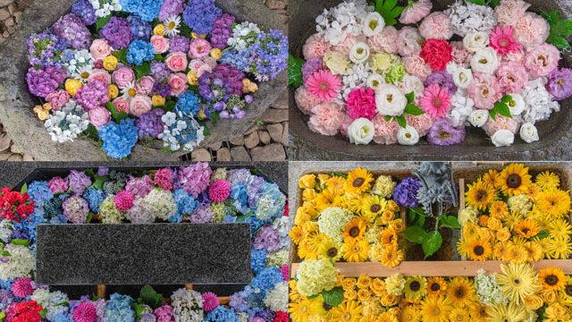 【2020】札幌の花手水めぐりの様子│札幌市内6社の花手水を掲載