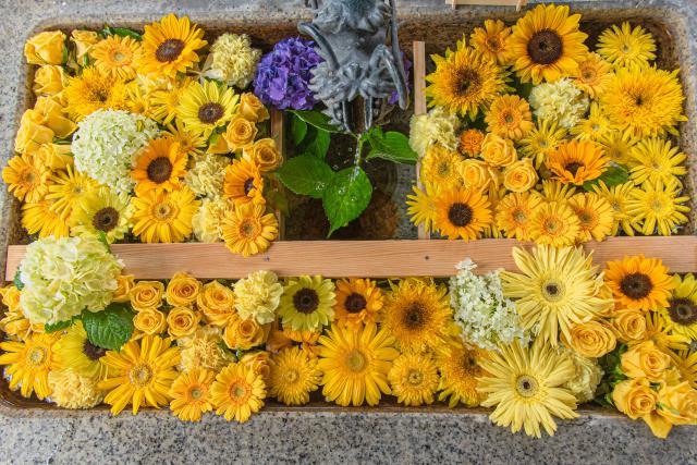 札幌諏訪神社の花手水