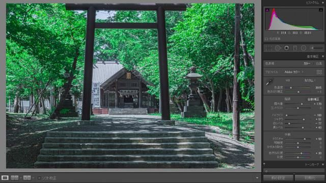 【ライトルーム】緑の風景写真をジブリ風にレタッチする方法【超簡単】