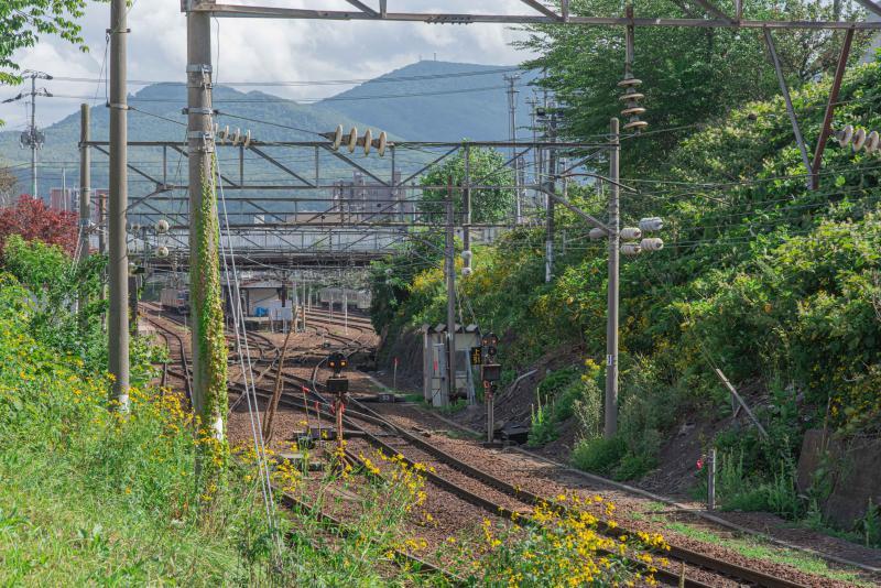 竜宮神社から見た線路のある素敵な風景