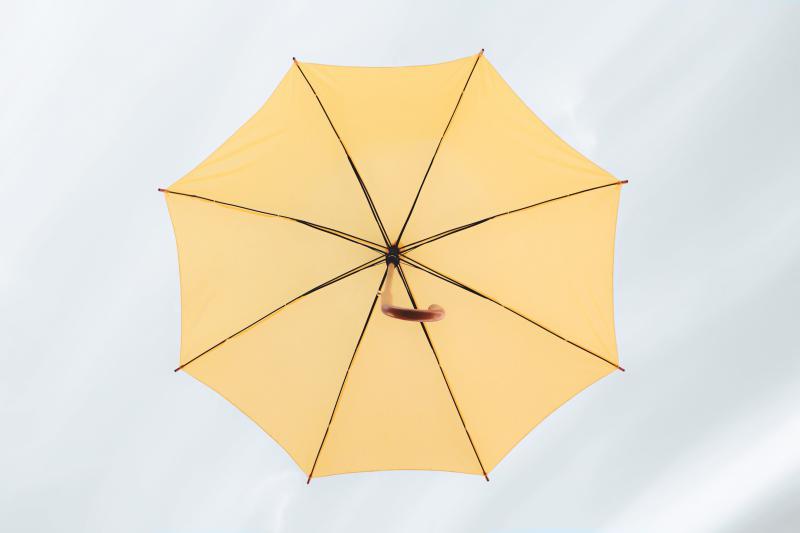 傘の骨の本数も、強度に関係あり