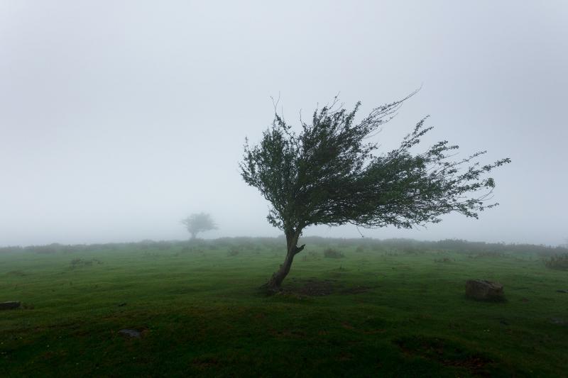 札幌の強風への対策を考えた