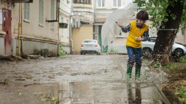 風に強い、おすすめ折り畳み傘4選。台風の風速にも耐える傘はどれ?