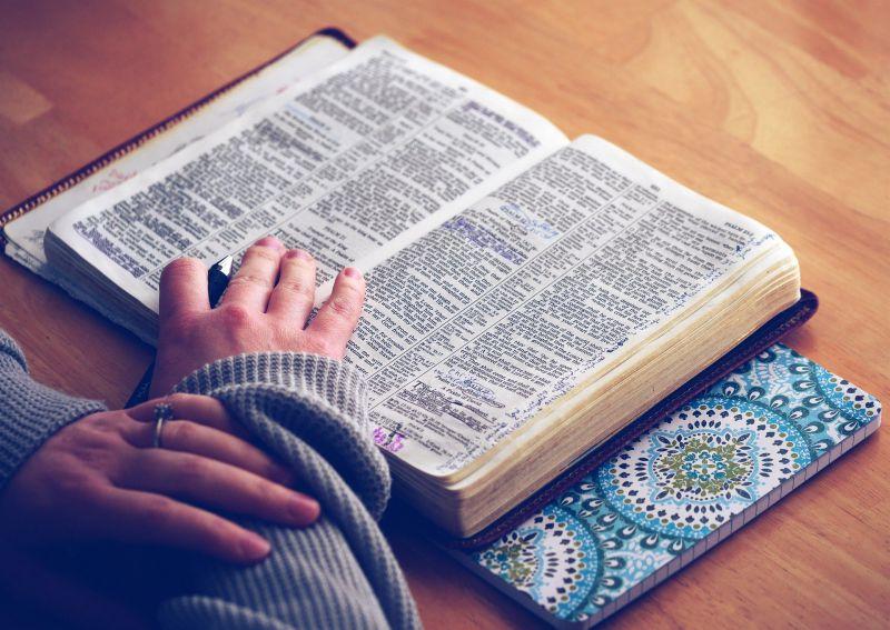語彙を増やすために役立つ本3選