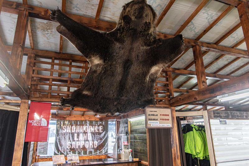 センターハウスの天井にクマが張り付いてる